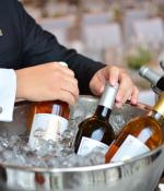 葡萄酒品飲溫度:冰鎮還是提溫?