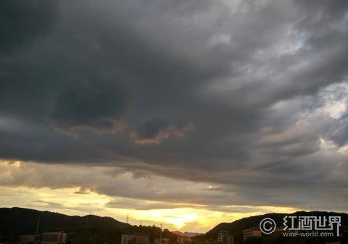 法国勃艮第伯恩丘再遭暴雨袭击
