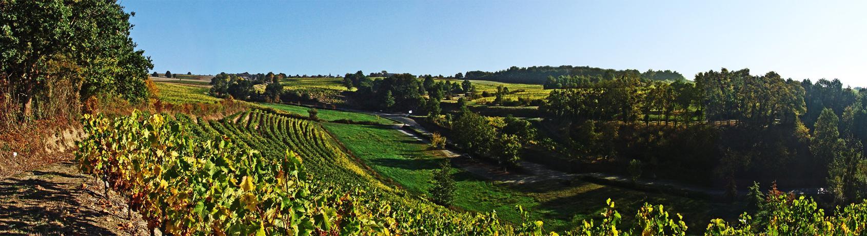 """这一站,""""法国花园""""卢瓦尔河谷"""