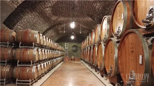 北罗纳河谷最大的酿酒合作社看好未来的发展