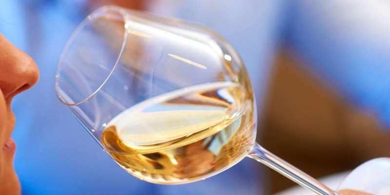 教你识别葡萄酒中的花香和草本风味