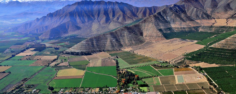 走近智利子产区之阿空加瓜