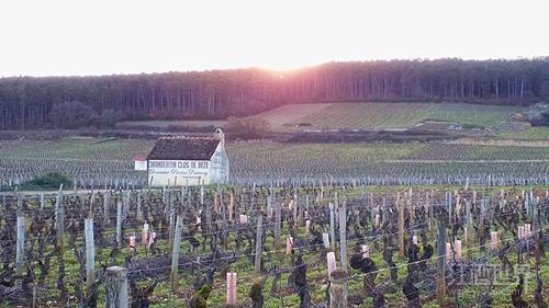 1964年份迪罗什(香贝丹-贝斯特级园)红葡萄酒