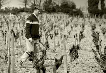 杰西斯·罗宾逊:稀雅丝酒庄的百年孤独