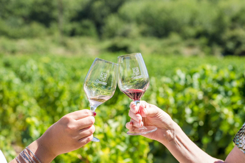 南北罗纳河谷葡萄园品种对比:百花争艳VS独领风骚