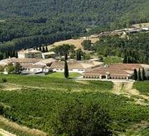 萨利亚酒庄(Senorio de Sarria)