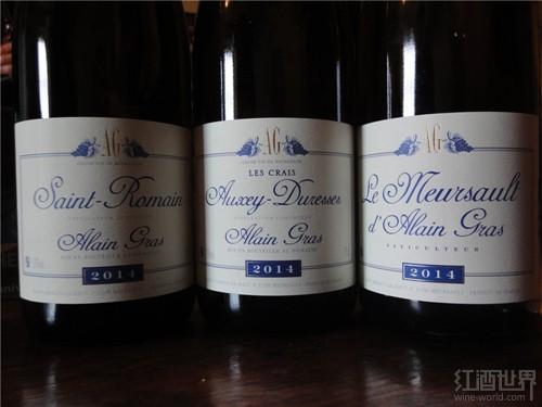 红酒世界勃艮第名庄探访之旅——阿兰格拉斯酒庄