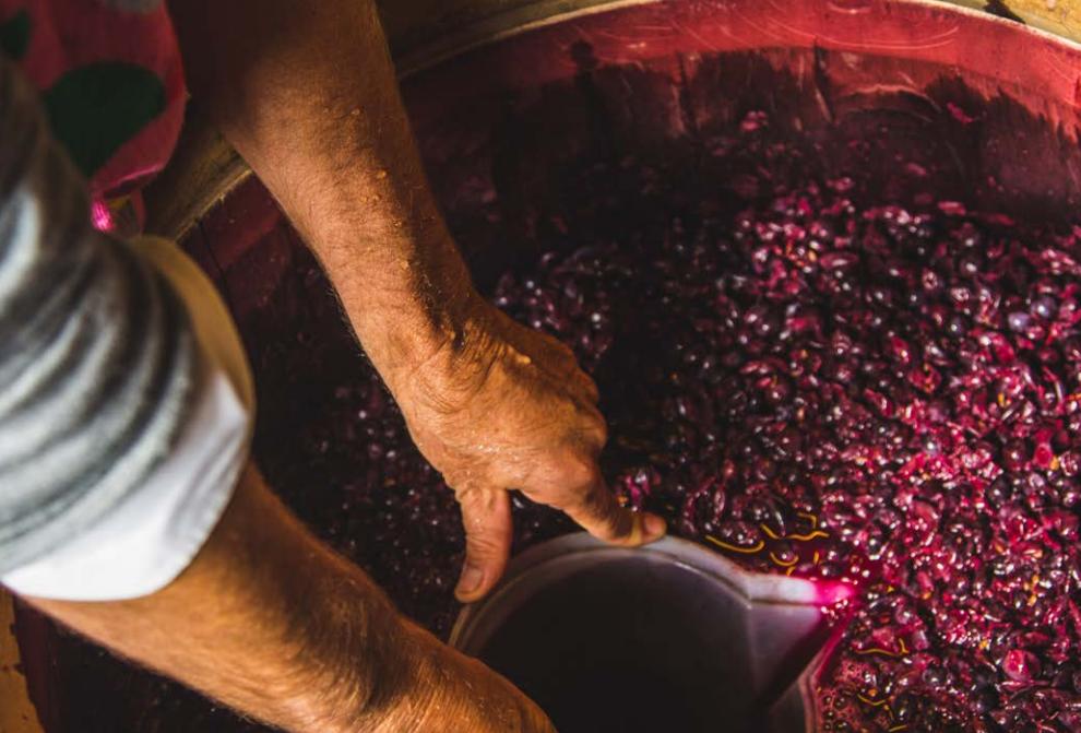 """""""意大利葡萄酒界英雄""""之作,调色板上的托斯卡纳"""