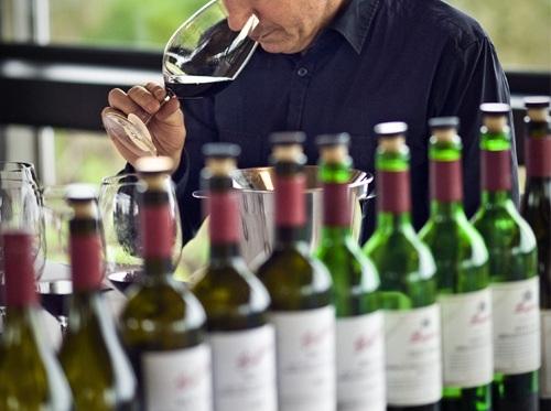 葡萄酒中的软木塞污染