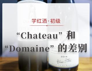 """Chateau""和""Domaine""的差别"