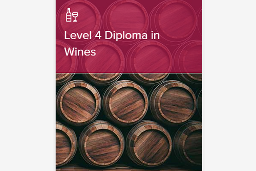 WSET和ISG葡萄酒认证课程有什么区别?