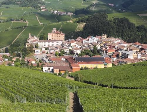 意大利的4大葡萄酒圣地