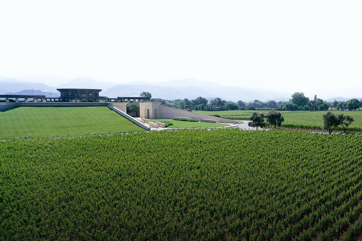 纳帕谷葡萄酒之旅的温馨小贴士