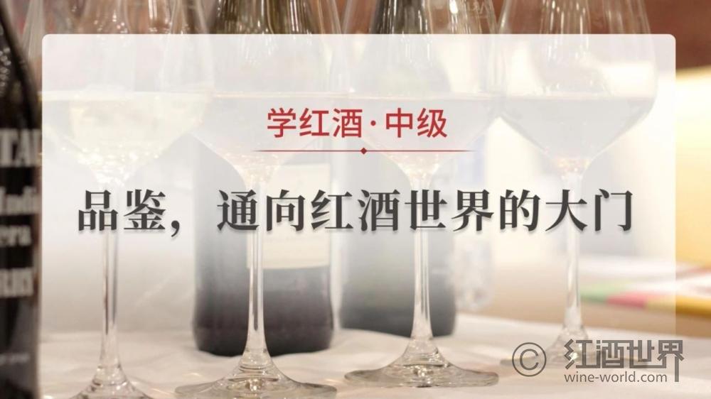 《学红酒》开学啦!