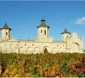 愛士圖爾莊園Chateau Cos d