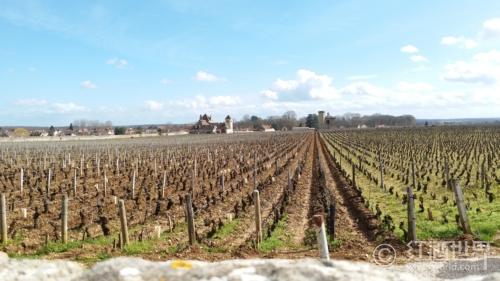 1978年份武戈伯爵酒庄(慕西尼特级园)老藤红葡萄酒