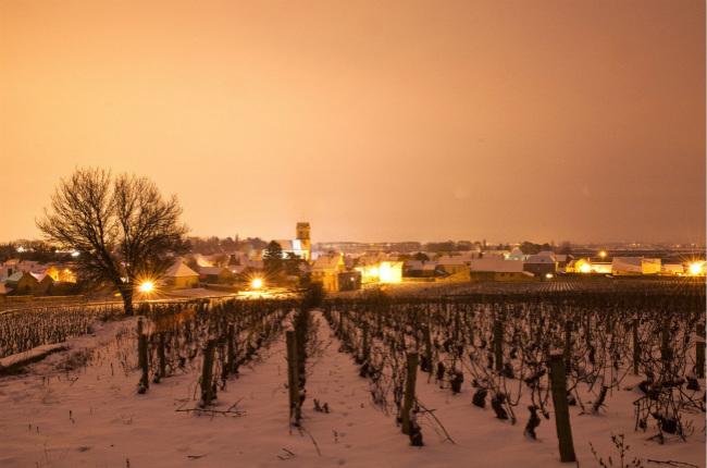 勃艮第将斥资1.25亿建葡萄酒城