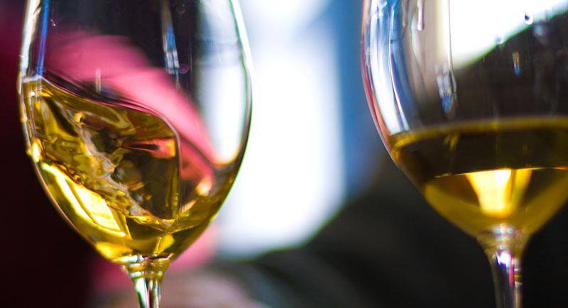 你所不知道的酿酒葡萄