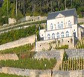 安慕拉夏酒庄(Domaine Arnoux-Lachaux)