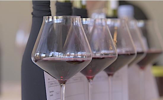 """博若萊新酒:世界上最""""快""""的葡萄酒"""