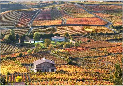 西班牙10大最具潜力葡萄酒产区