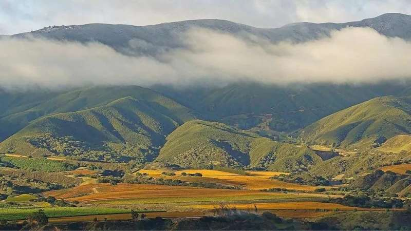 加州蒙特利县产区指南