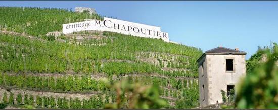 果味浓郁的旧世界酒:罗讷河谷丘酒款推荐