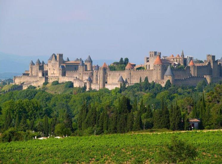 南法的珍宝,探秘法国南部地区特级园