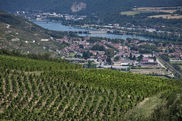 法国北罗讷河谷葡萄酒地图