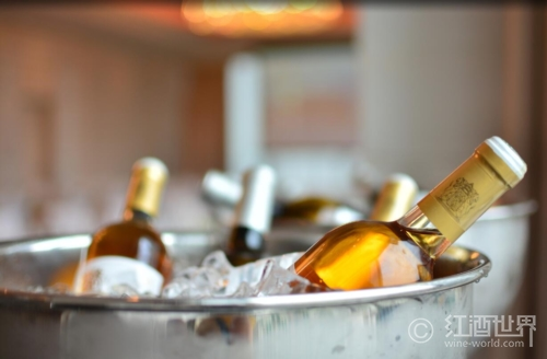储酒和侍酒基本小知识