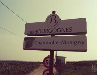 三十年来勃艮第红葡萄酒最优秀的年份