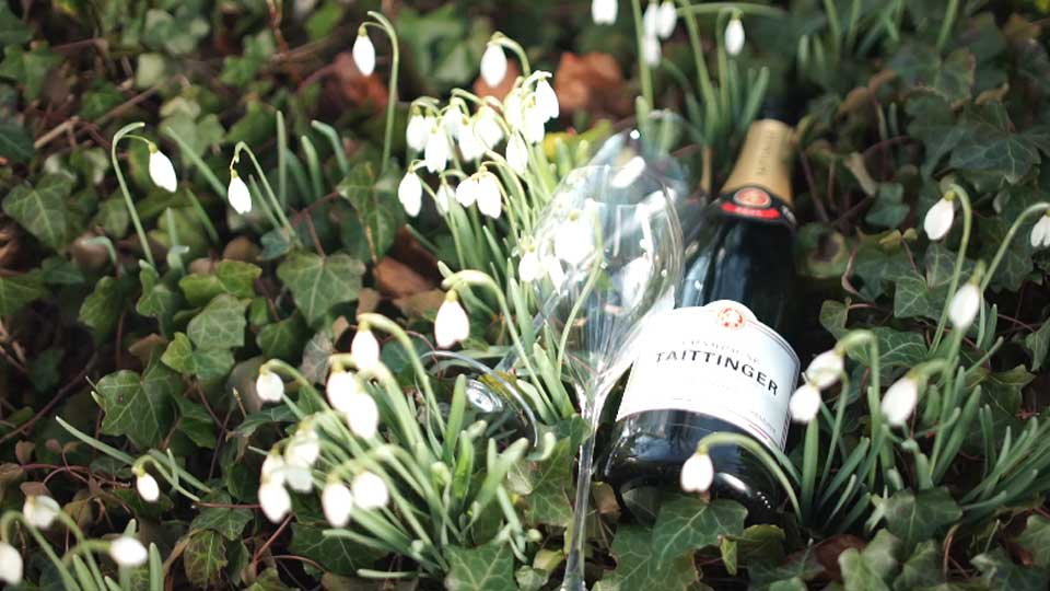 泰亭哲香槟:集尊贵地位和艺术造诣于一身