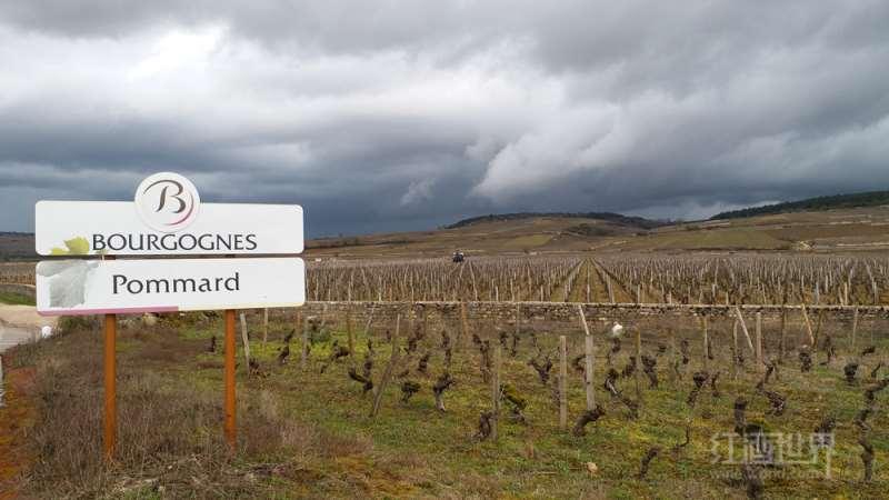 勃艮第玻玛村首批特级葡萄园即将诞生