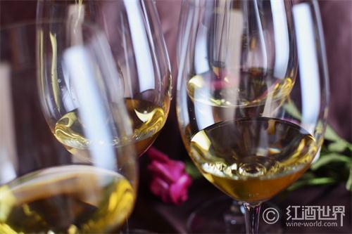 走进葡萄酒品鉴之门的十个步骤