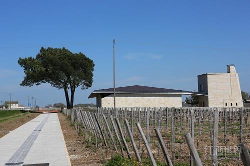 十大2014年份波尔多葡萄酒(下)