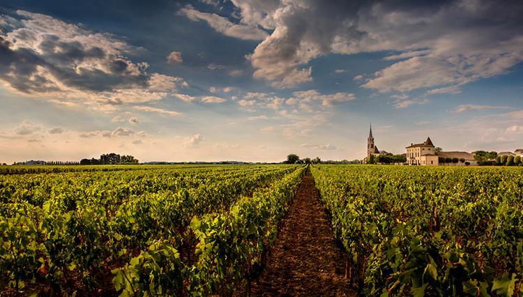 葡萄酒界四大顶级家族
