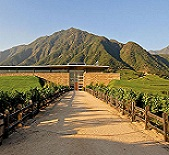 蒙特斯酒庄(Montes Wines)