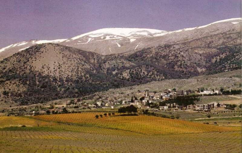 黎巴嫩最亮的星——睦纱古堡