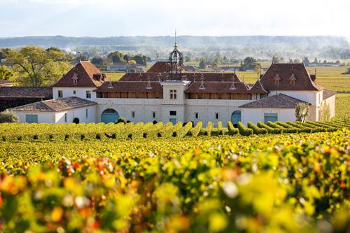 波尔多右岸:将更加关注葡萄的种植和葡萄园的管理