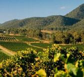天瑞酒庄(Tyrrell's Wines)