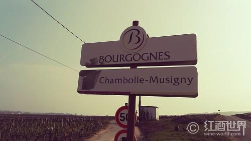 勃艮第5大产区的葡萄酒风格