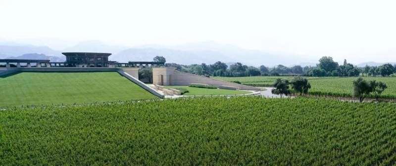 JS97分美国酒王作品一号,木桐与蒙大维联手打造的纳帕经典