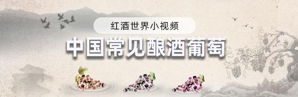 中国常见酿酒葡萄