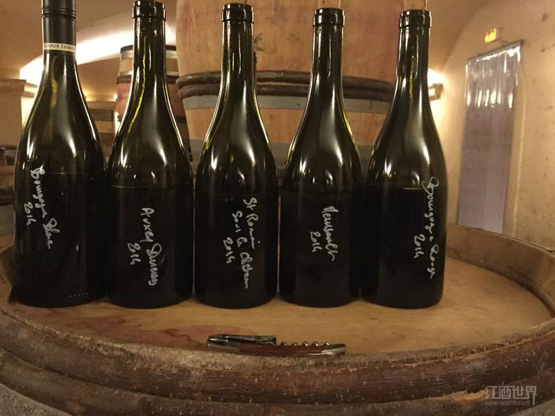 红酒世界勃艮第名庄探访之本杰明·勒胡酒庄