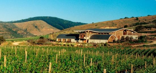 智利葡萄酒:每个价位均有超值酒款