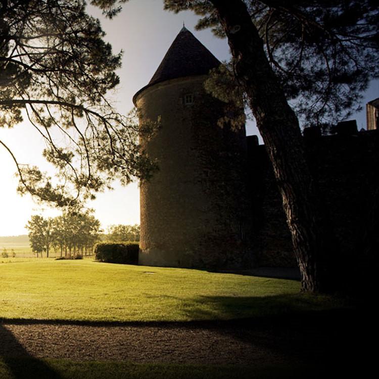 滴金酒庄Chateau d