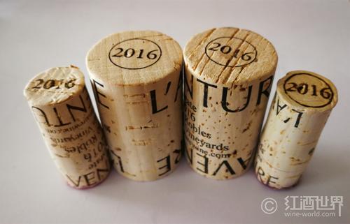说说葡萄酒的年份