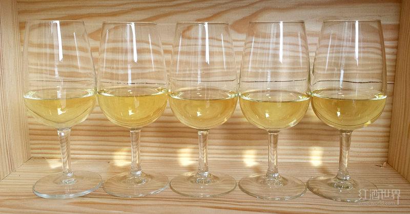 你必须了解的勃艮第白葡萄酒产区——夏布利