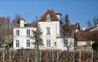 塞纳伯爵酒庄(Domaine Comte Senard)