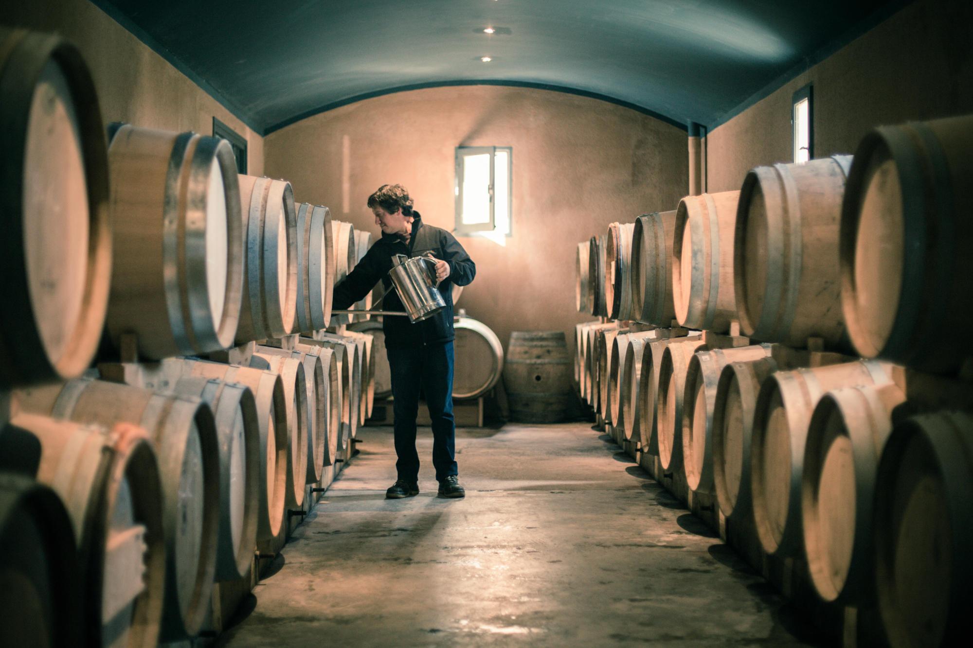 橡木桶如何影响白葡萄酒?